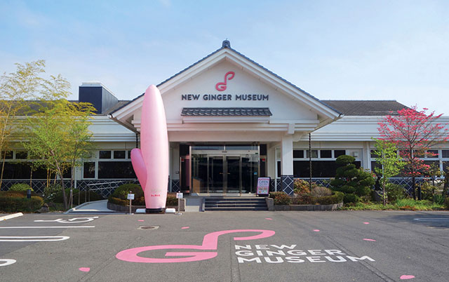 New Ginger Museum